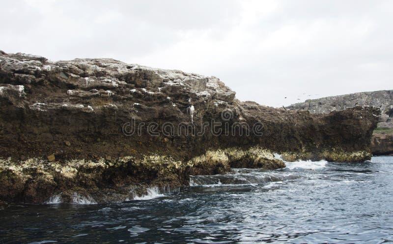 Scogliere di riva dell'oceano immagine stock