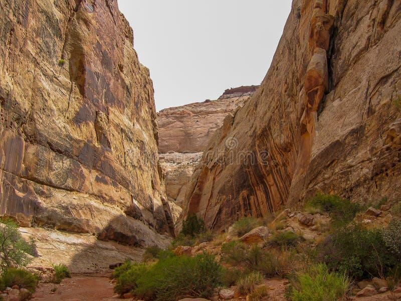 Scogliere elevantesi del parco nazionale della scogliera del Campidoglio immagini stock