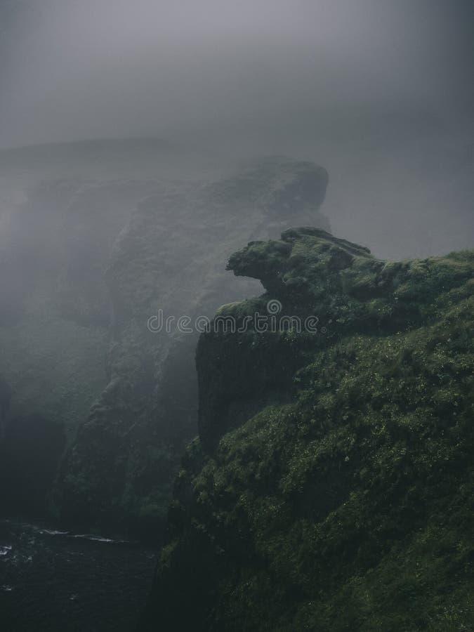 scogliere nebbiose verdi in fiordi occidentali immagine stock libera da diritti