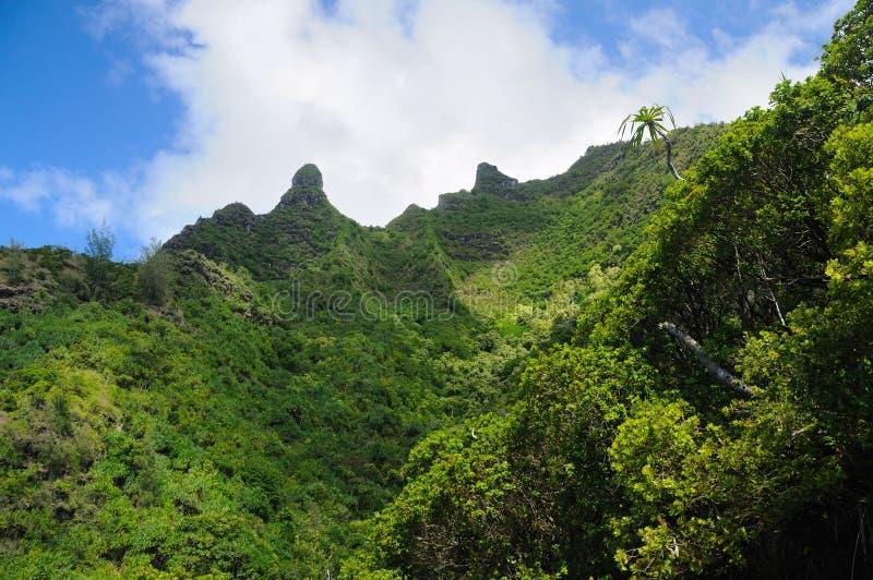 Scogliere tropicali in Hawai immagini stock