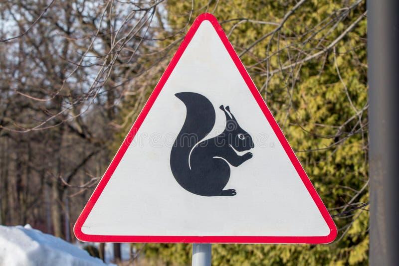 Scoiattoli di cautela - segnale stradale d'avvertimento nel parco immagine stock
