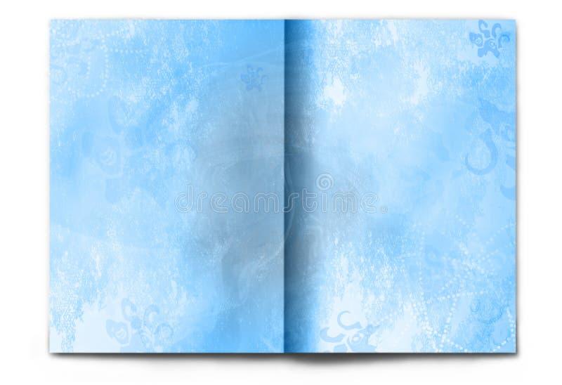 Scomparto in bianco/vuoto di inverno si è sparso su bianco immagine stock libera da diritti