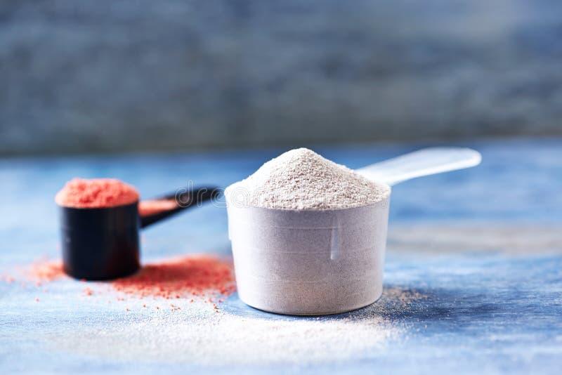 Scoop de poudre de protéine de lactalbumine et de créatine Nutrition de sport photographie stock libre de droits