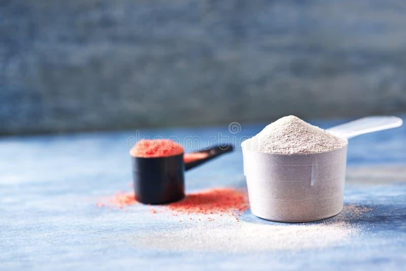 Scoop de poudre de protéine de lactalbumine et de créatine Nutrition de sport photos stock
