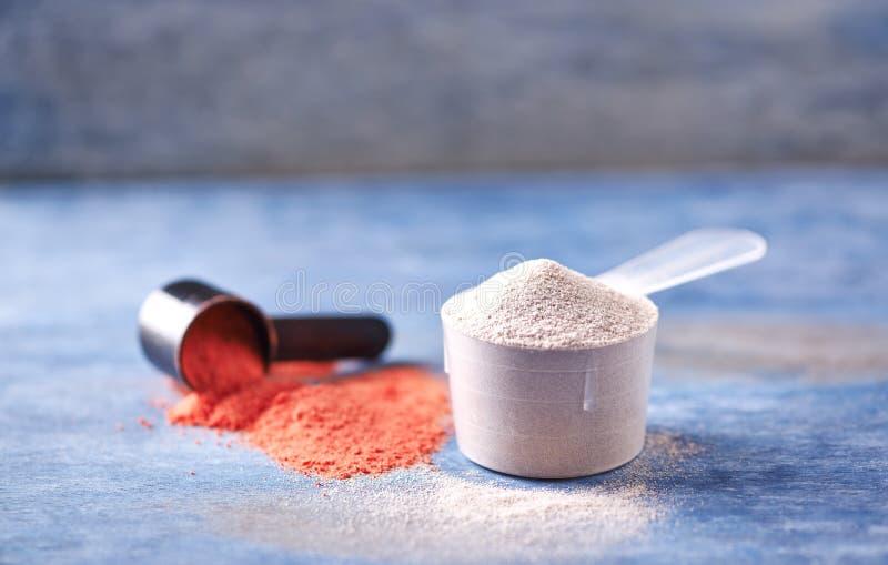 Scoop de poudre de protéine de lactalbumine et de créatine Nutrition de sport image stock