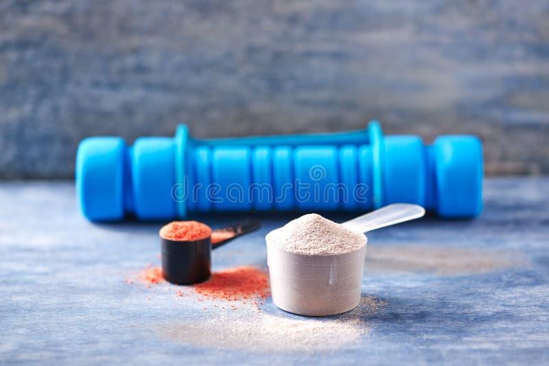 Scoop de protéine de lactalbumine, de poudre de créatine et d'une haltère bleue à l'arrière-plan Nutrition de sport images stock