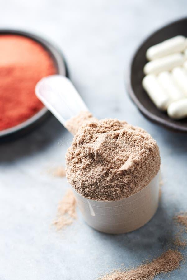 Scoop de prot?ine de lactalbumine, de capsules de B?ta-alanine et de poudre de cr?atine Nutrition de sport images stock