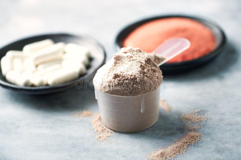 Scoop de prot?ine de lactalbumine, de capsules de B?ta-alanine et de poudre de cr?atine Nutrition de sport image stock