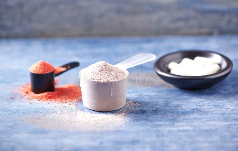 Scoop des capsules de protéine de lactalbumine, de poudre de créatine et de taurine Nutrition de sport images stock