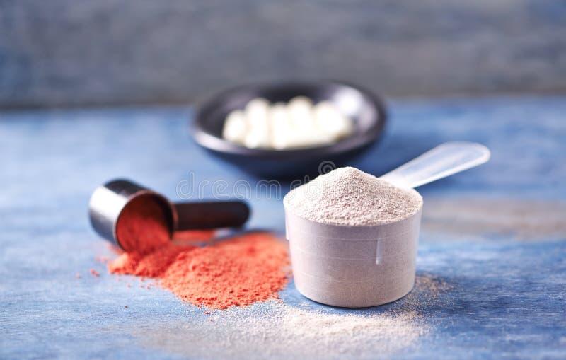 Scoop des capsules de protéine de lactalbumine, de poudre de créatine et de taurine Nutrition de sport photo libre de droits