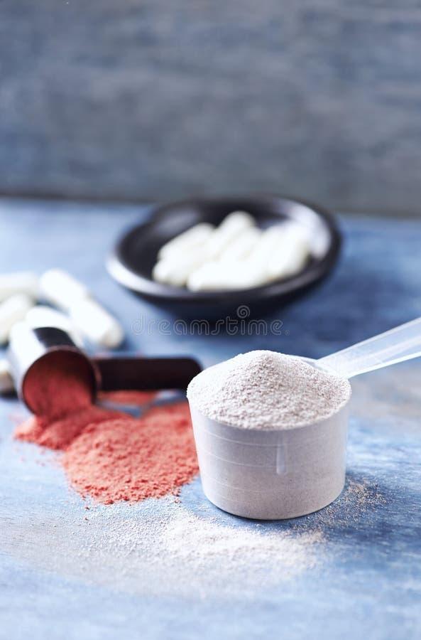 Scoop des capsules de protéine de lactalbumine, de poudre de créatine et de taurine Nutrition de sport photo stock