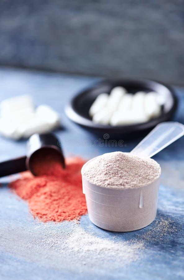 Scoop des capsules de protéine de lactalbumine, de poudre de créatine et de taurine Nutrition de sport photos libres de droits