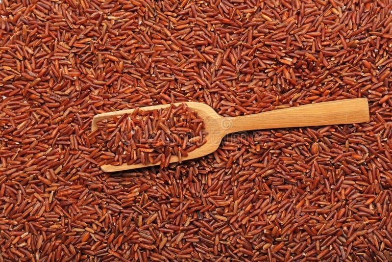 Scoop en bois sur le riz rouge photos libres de droits