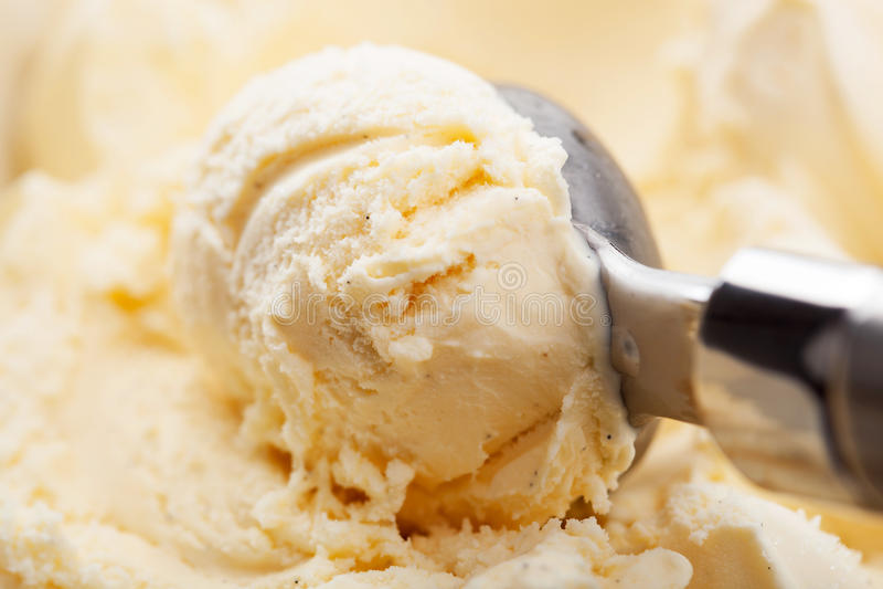 Scoop of vanilla ice cream royalty free stock image