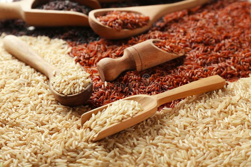 Scoops et cuillères avec différents types de riz photographie stock