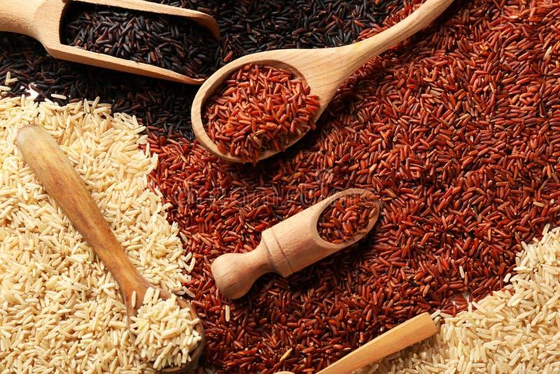 Scoops et cuillères avec différents types de riz photographie stock libre de droits