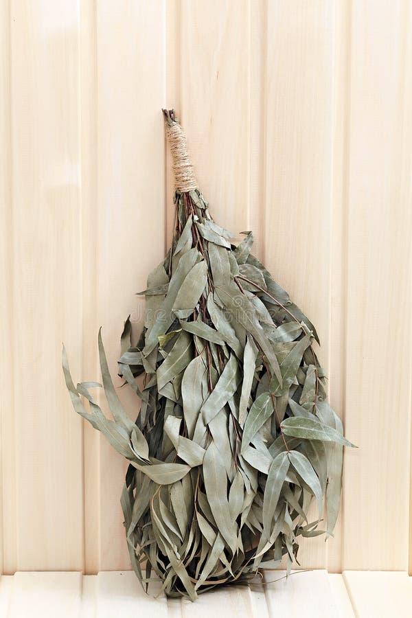 Scopa Dell\'eucalyptus Per Un Bagno Immagine Stock - Immagine di ...