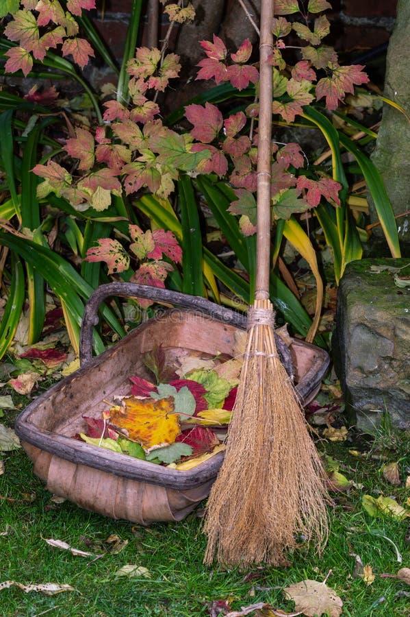 Scopa e trug di scopa Foglie di autunno di schiarimento in giardino fotografia stock libera da diritti