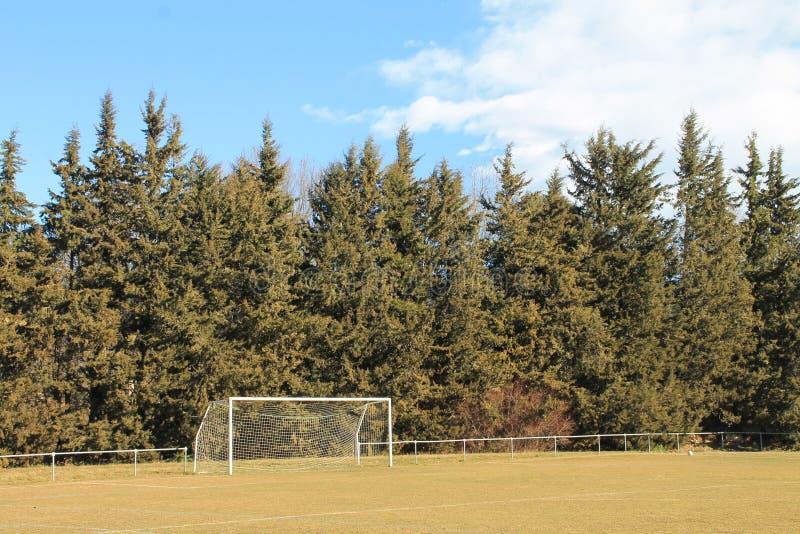 Scopo di calcio in natura completa immagine stock