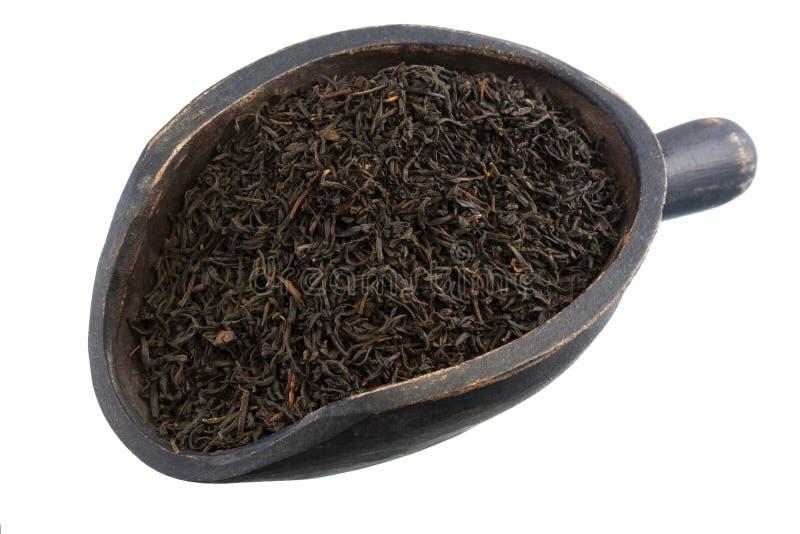Scopp of keemun oolong tea stock images