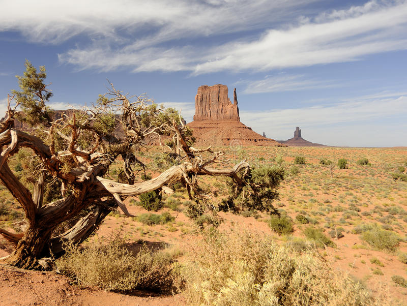 SCORCHING HEAT IN MONUMENT VALLEY stock photo