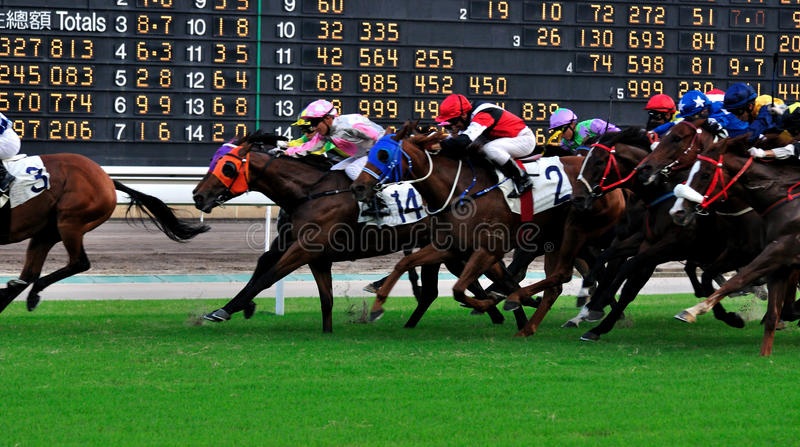 Score board of horse racing royalty free stock photo