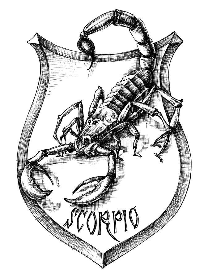Scorpio rysunek royalty ilustracja