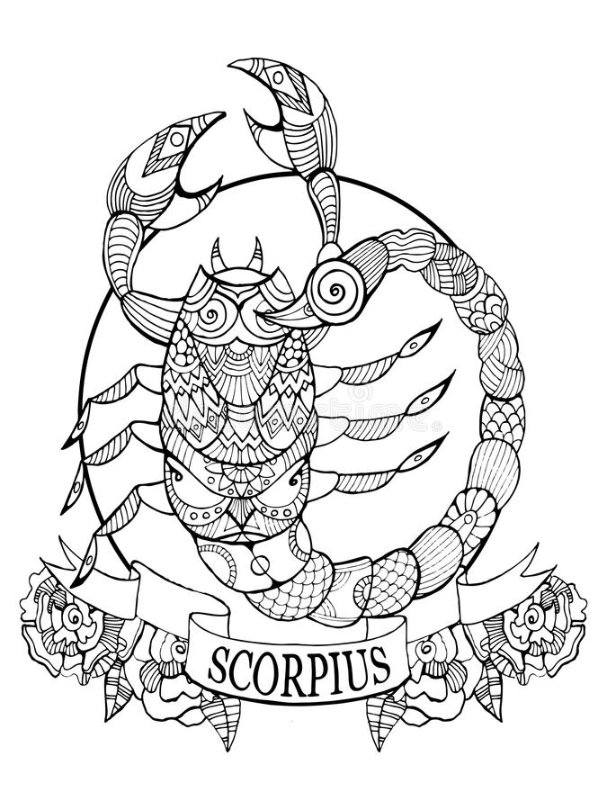 scorpio zodiac sign coloring book vector stock vector illustration of outline coloring 87988385. Black Bedroom Furniture Sets. Home Design Ideas