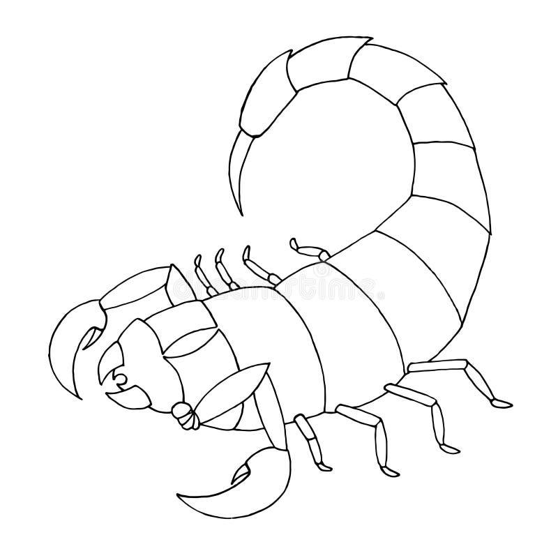 Download Scorpion Coloring Book Vector Outline Illustration Scorpio Stock