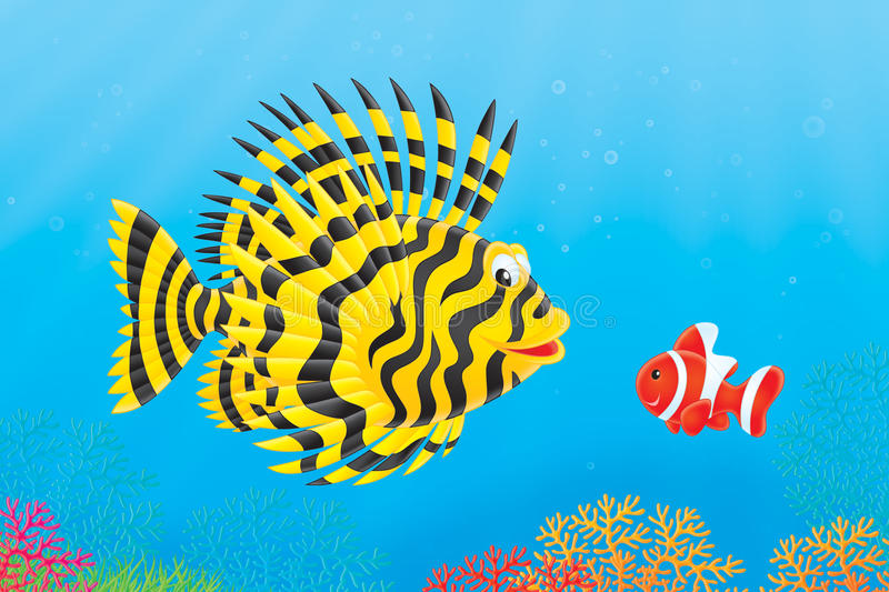 Download Scorpion-fish And Anemonefish Stock Illustration - Image: 19308469