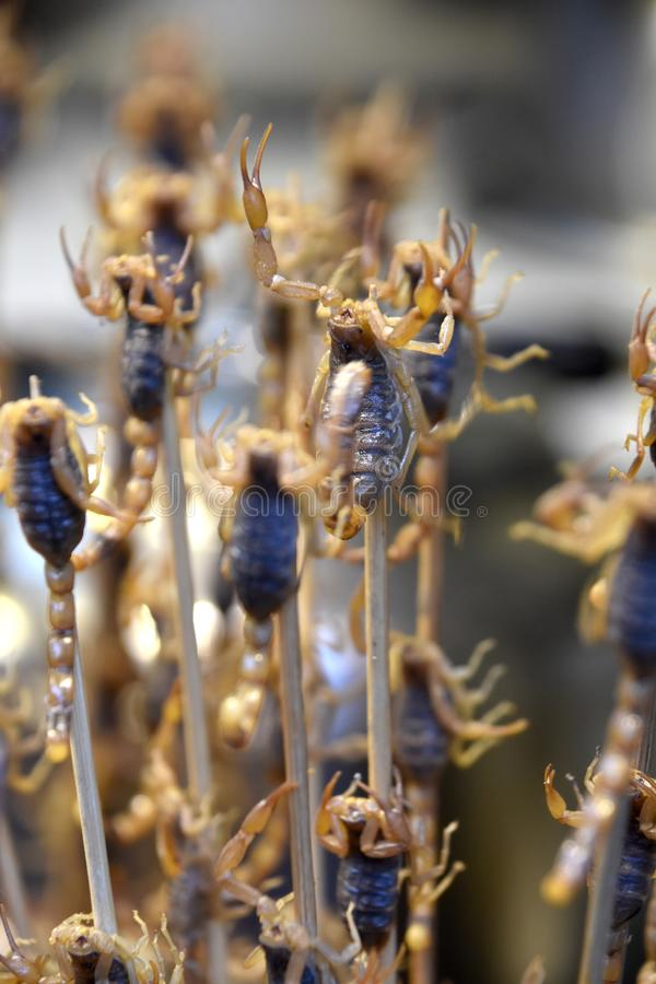 Scorpion Skewers at Wangfujing Night Market, Beijing, China stock images
