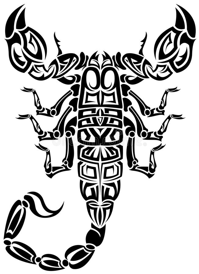 Download Scorpion tribal stock vector. Illustration of poison - 18407760