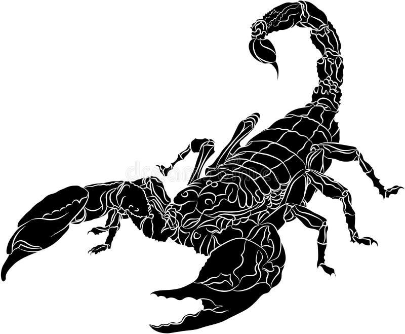 Scorpione isolato su priorità bassa bianca royalty illustrazione gratis