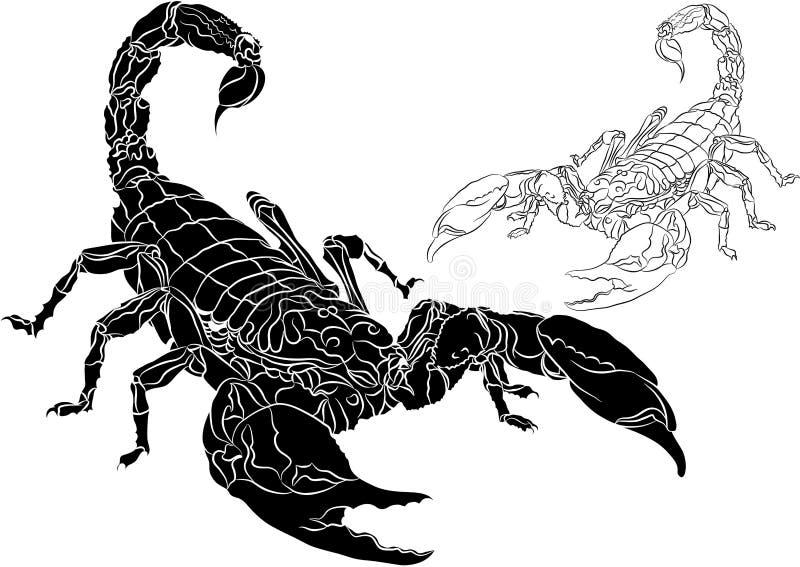 Scorpione isolato su priorità bassa bianca illustrazione vettoriale