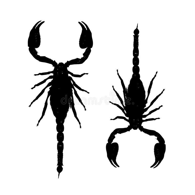 Scorpioni, siluetta nera per la vostra progettazione illustrazione di stock