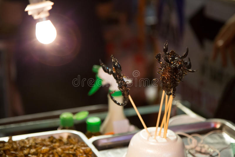 scorpions image stock