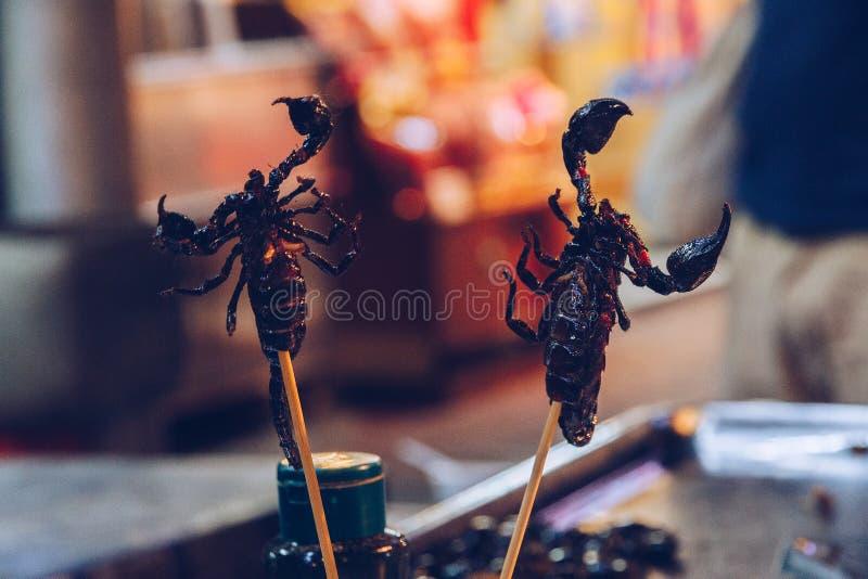scorpions imagens de stock