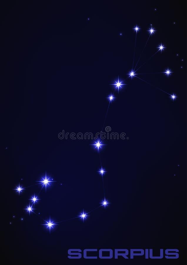 Scorpius星座 向量例证