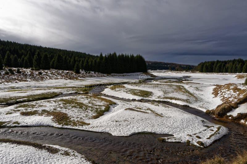 Scorrimenti dell'acqua fra la neve immagine stock