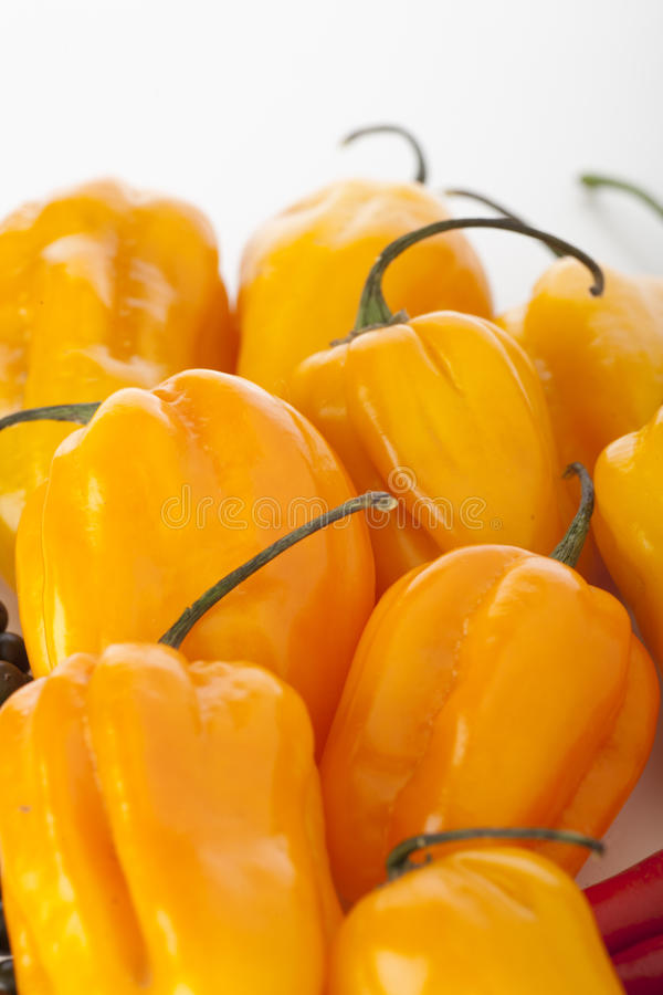 Free Scotch Bonnets Royalty Free Stock Images - 17615389