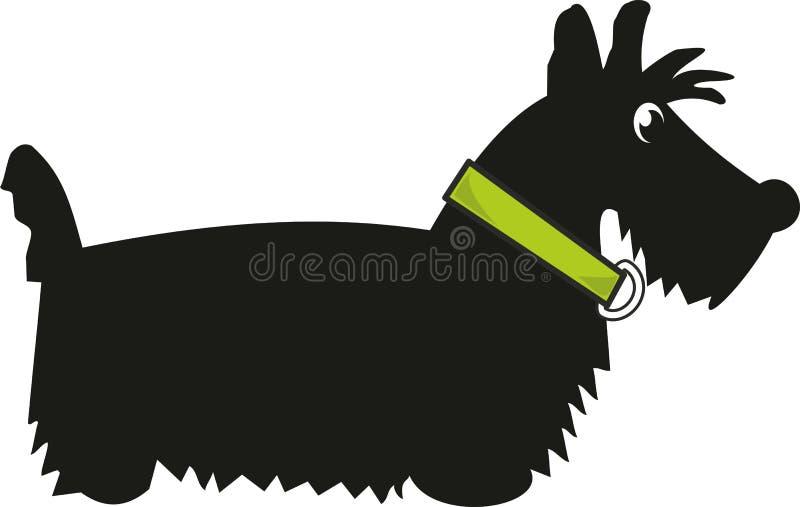 scotch terrier för valp royaltyfri illustrationer