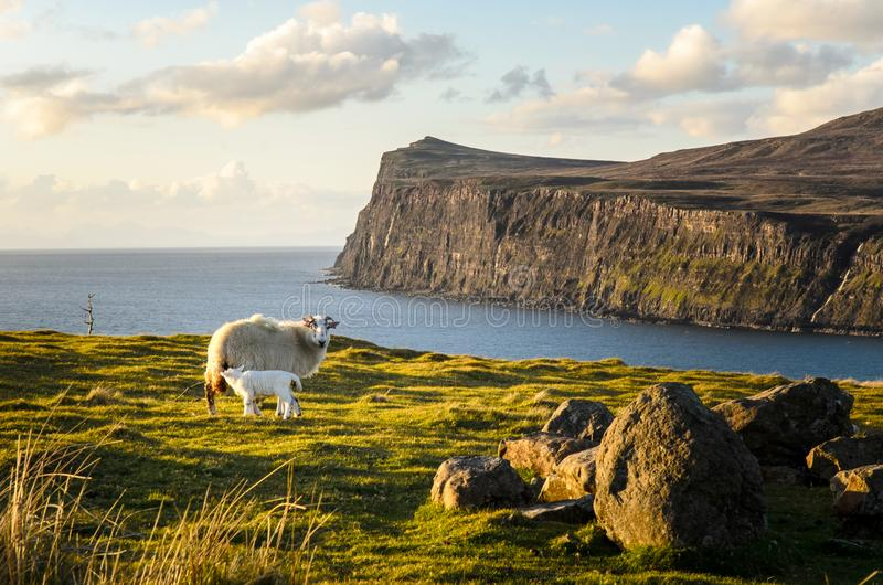 Scotland cliff landscape, Isle of skye great britain stock photo