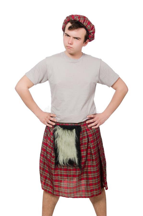 Download Scotsman divertido aislado imagen de archivo. Imagen de chistoso - 41914209