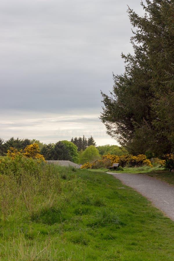 Scotstown attracca il percorso fotografia stock