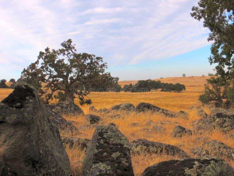 Scott Road Landscape Sacramento royalty free stock photos