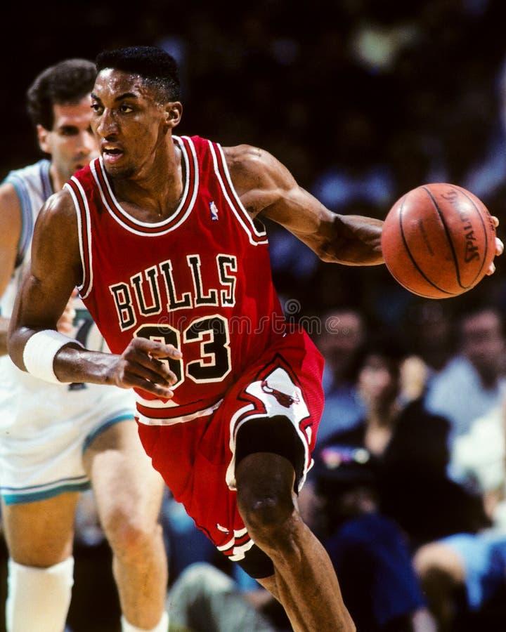 Free Scottie Pippen Chicago Bulls Stock Photography - 39072752