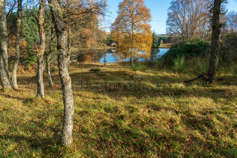 Scottish coutryside lake. Abandoned boat house and lake in the countrside in Perthshire, Scotland during autumn stock photos