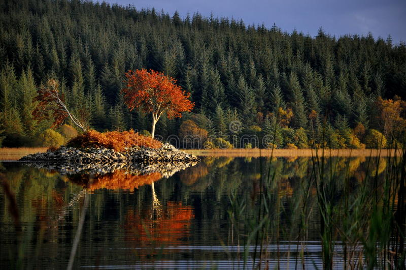 Scottish Crannog fotos de stock