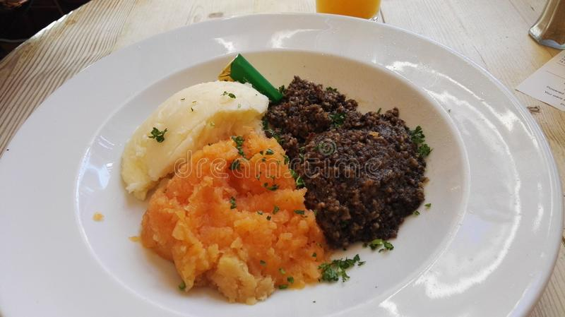 Scottish Haggis vom Elefantenhaus stockbilder