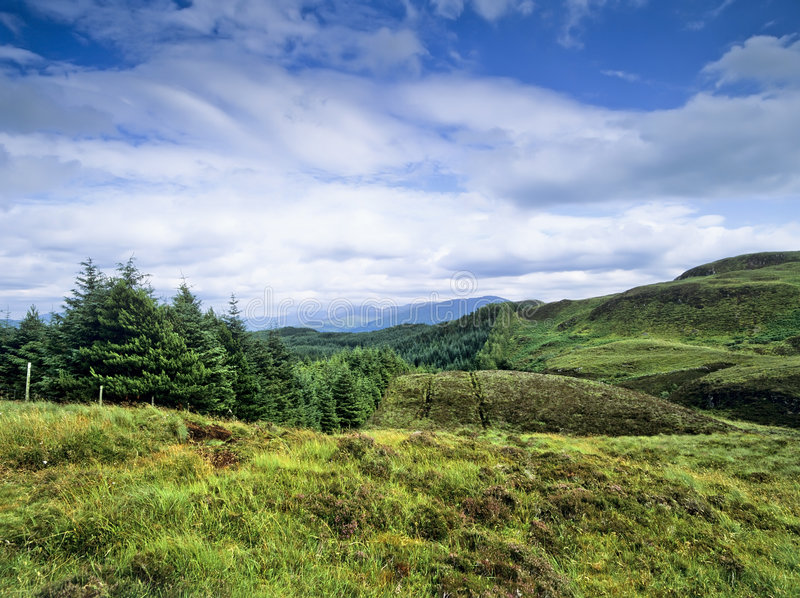 Download Scottish highlands stock photo. Image of moor, scenics - 6366960